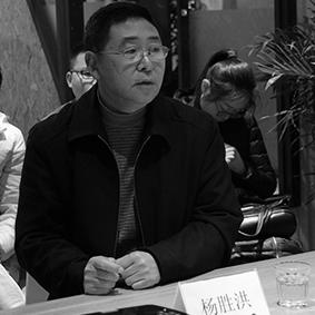 专家库评委:【杨胜洪】
